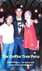 Coffee Tree Stars Peru Ollantaytambo Travel