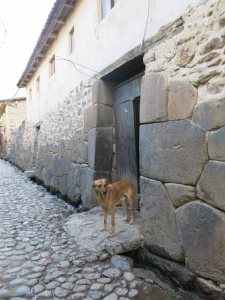 Ollantaytambo's Cobbled Stones - Peruvian tales from Author Caroline Cunningham of Wild Star Landing.