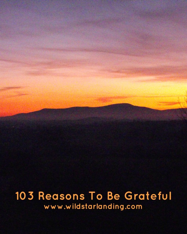103 Reasons To Be Grateful