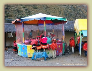 Andean People Peur
